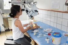 TP d'ophtalmologie
